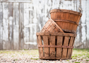 Building a Basket Empire