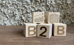 Connected Women of Influence Climbing to the Top of B2B's!