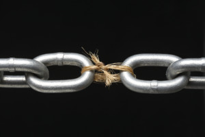 The Missing Link to Success in Your Business