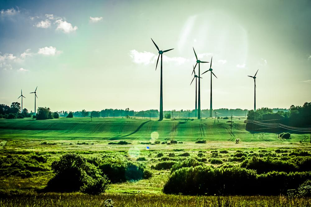 Let's Talk Renewable Energy l Women Lead TV